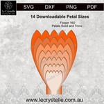 F160 Flower Solid Petals CUT FILE