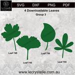 Group 3 Leaves