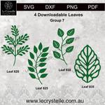 Group  7 Leaves