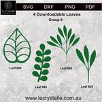 Group  8 Leaves