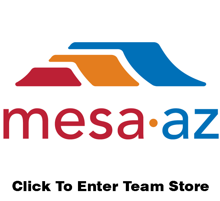 omg-store-link-mesa-special-olympics.jpg