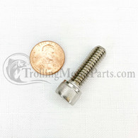 Minn Kota Bowguard Mounting Bolt (Fortrex/Ultrex) (Stainless)
