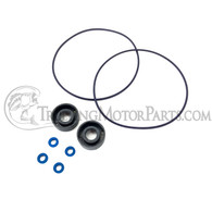 Motor Guide Standard Digital Seal Kit