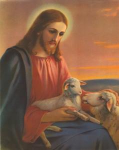 The Good Shepherd Jesus Christ Cardstock Print, 10 Inch, Pack of 20