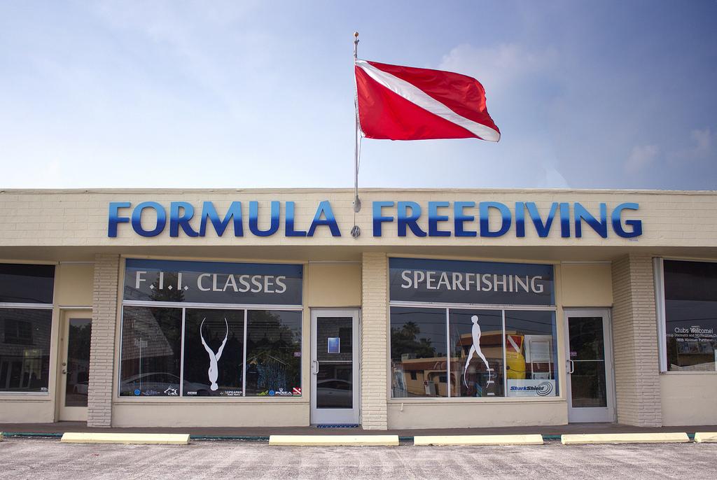 fffrontpic.jpg