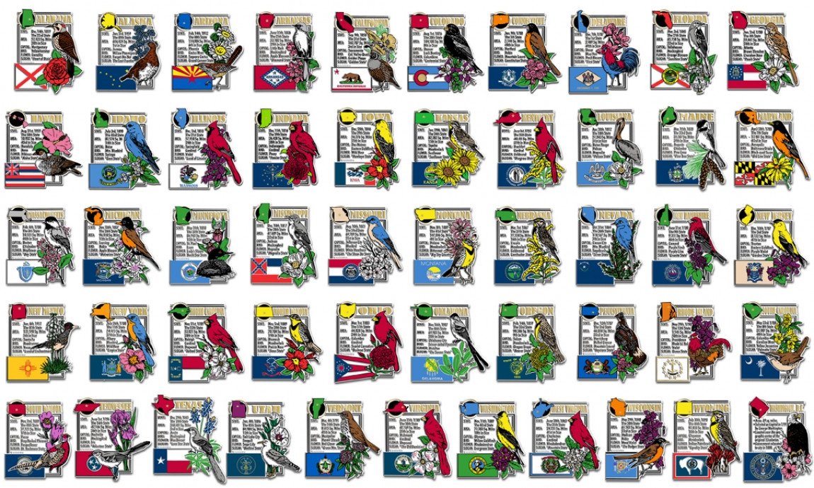 All 50 state montage magnets and Washington D.C. magnet