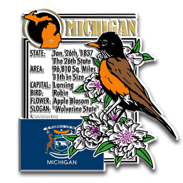 Detail of Michigan magnet included in set.