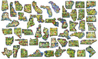 Artwood U.S. State Magnet Set by Classic Magnets, 51-Piece Collection by Classic Magnets