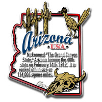 """Arizona Information State Magnet by Classic Magnets, 2.4"""" x 2.8"""", Collectible Souvenirs Made in the USA"""