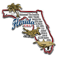 """Florida Information State Magnet by Classic Magnets, 3.4"""" x 3.3"""", Collectible Souvenirs Made in the USA"""