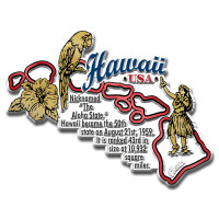 """Hawaii Information State Magnet by Classic Magnets, 3.6"""" x 2.8"""", Collectible Souvenirs Made in the USA"""