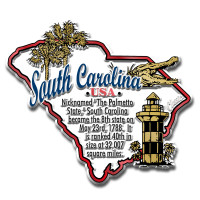 """South Carolina Information State Magnet by Classic Magnets, 3.2"""" x 2.9"""", Collectible Souvenirs Made in the USA"""