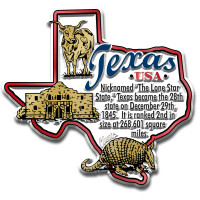 """Texas Information State Magnet by Classic Magnets, 3.1"""" x 2.9"""", Collectible Souvenirs Made in the USA"""