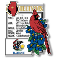 """Illinois State Montage Magnet by Classic Magnets, 2.9"""" x 3.4"""", Collectible Souvenirs Made in the USA"""