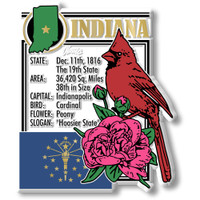 """Indiana State Montage Magnet by Classic Magnets, 2.8"""" x 3.3"""", Collectible Souvenirs Made in the USA"""