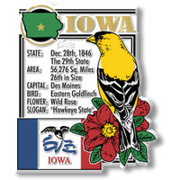 """Iowa State Montage Magnet by Classic Magnets, 2.8"""" x 3.3"""", Collectible Souvenirs Made in the USA"""