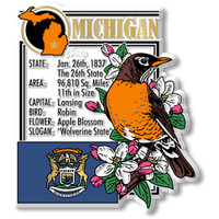 """Michigan State Montage Magnet by Classic Magnets, 3"""" x 3.4"""", Collectible Souvenirs Made in the USA"""