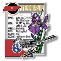 """Tennessee State Montage Magnet by Classic Magnets, 3.2"""" x 3.4"""", Collectible Souvenirs Made in the USA"""
