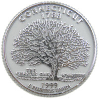 Connecticut State Quarter Magnet by Classic Magnets, Collectible Souvenirs Made in the USA