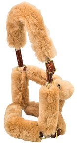 Western Natural Leather Halter with Brass Hardware and Beige Sheep Lining  By Aledo Saddlery
