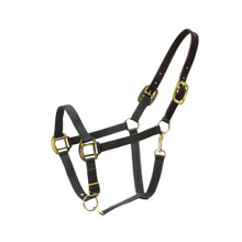 Western Black Plain Leather Halter with Lead Chain By Aledo Saddlery