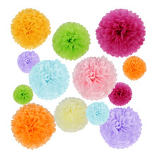 kilofly 24pc Wedding Crafts Tissue Paper Pom Pom Flower Color Party Decoration