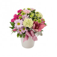 Pretty pastel suitable for any occasion. In a ceramic pot.