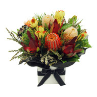 Local SEASONAL ( Pincushion Protea  mix) Natives SPECIAL