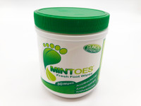 Mintoes Deodorizing Foot and Underarm  Wipes