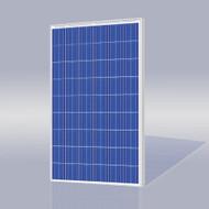 Risen Energy SYP205P 205 Watt Solar Panel Module image