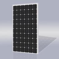 Risen Energy SYP230M 230 Watt Solar Panel Module image