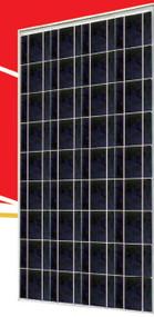 Sunrise SR-P636 125  Watt Solar Panel Module image