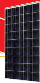 Sunrise SR-P636 135 Watt Solar Panel Module image