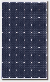 Canadian Solar CS6P-270MM 270 Watt Solar Panel Module Image