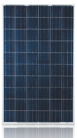 Ulica Solar UL-240P-60 240 Watt Solar Panel Module Image