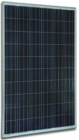 Solar Innova SI-ESF-M-P156-72 300 Watt Solar Panel Module