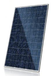 Canadian Solar CS6P-260P 260 Watt Solar Panel Module