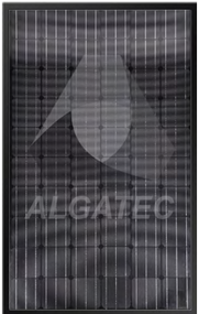 Algatec Solar ASM Mono 7-6 Black 260 Watt Solar Panel Module