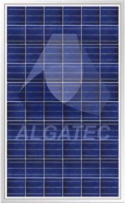 Algatec Solar ASM Poly CS 6-6 240 Watt Solar Panel Module