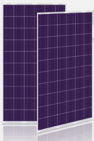 Calrays CSM240P-B-60 240 Watt Solar Panel Module