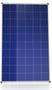 Canadian Solar Diamond CS6K-260P-FG 260 Watt Solar Panel Module