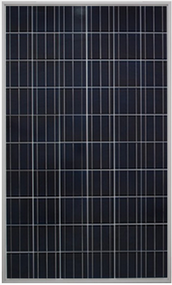 Gintech Energy GIN-P6-60-BK-250 250 Watt Solar Panel Module