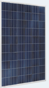 Perlight PLM-260P-60 260 Watt Solar Panel Module
