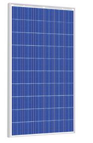 Risen Energy SYP255P 255 Watt Solar Panel Module