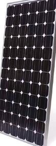 BP 4175T 175 Watt Solar Panel Module image