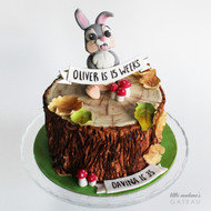 Thumper themed kids birthday cake