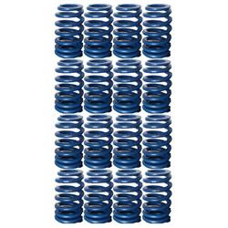 PAC 604 Cheater valve springs