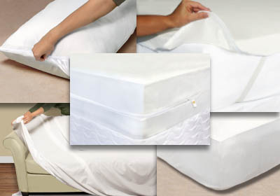 Mattress Safe Photos