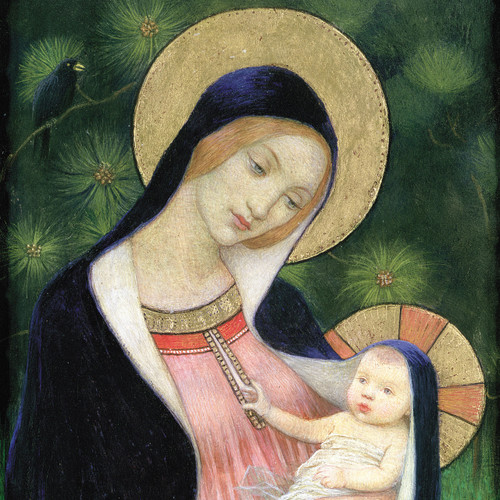 Madonna with Child.  £3.95 for 10 cards.  126 x 126mm with gloss finish.  Greeting: With Best Wishes for Christmas and the New Year.