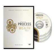 Learning the Process of Wealth, Vol. 3